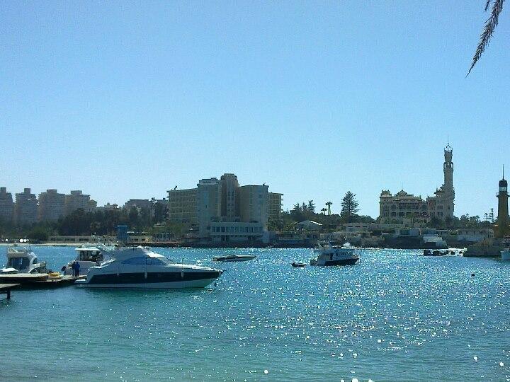Alexandria3